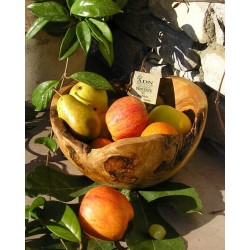 Coupe a fruits rutique diam. 23 cm env.